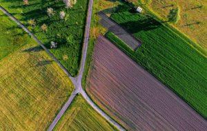 Bad Segeberg Plön Ostholstein ca 25 ha Ackerland gesucht Schleswig-Holstein Evers Landmakler