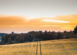 Nachfolgeregelung in Norddeutschland evers landmakler